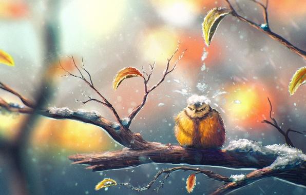 Картинка листья, птица, капля, ветка, погода, синица