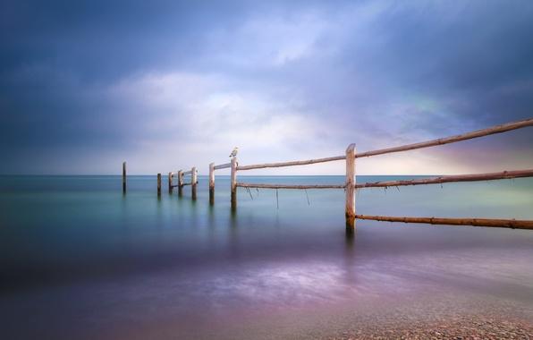 Картинка море, пляж, забор, чайки, Baltic Sea