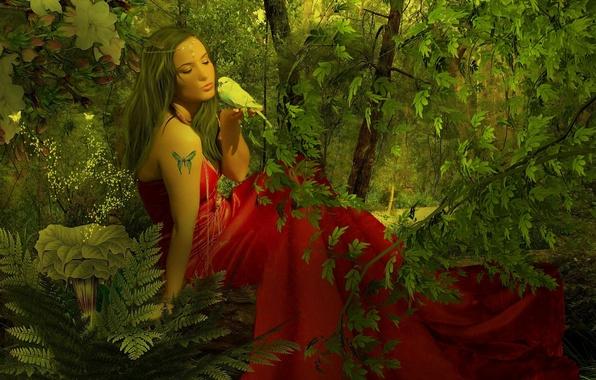 Картинка девушка, природа, фентези, бабочка, тату, арт, попугай, girl, Nature, parrot, art, butterfly, tattoo