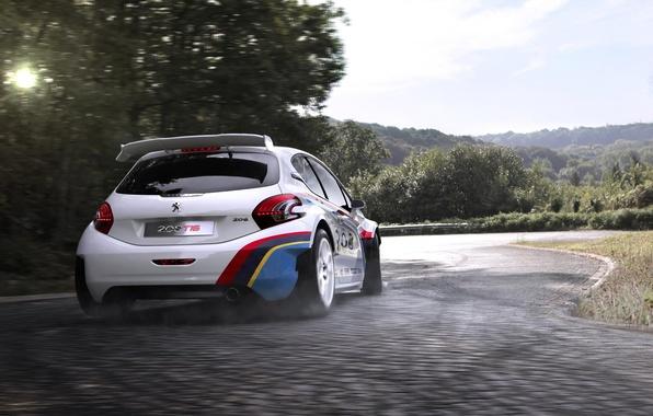 Картинка авто, спорт, гонки, Peugeot, 208, Peugeot 208 T16