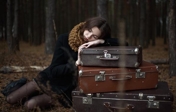 Картинка осень, лес, девушка, деревья, одиночество, ситуация, вечер, брюнетка, пальто, багаж, чемоданы