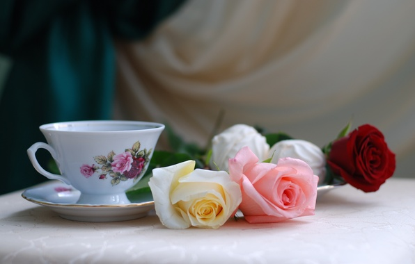 Картинка цветы, стол, праздник, чай, розы, чашка, натюрморт
