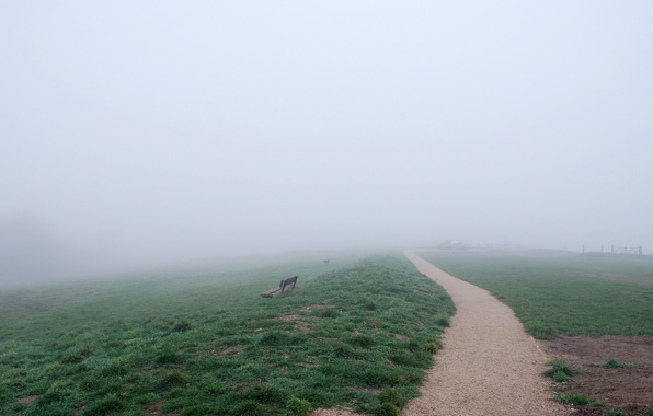 Картинка дорога, поле, природа, туман, скамья