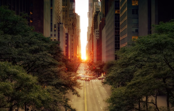 Картинка дорога, солнце, деревья, машины, город, улица, листва, здания