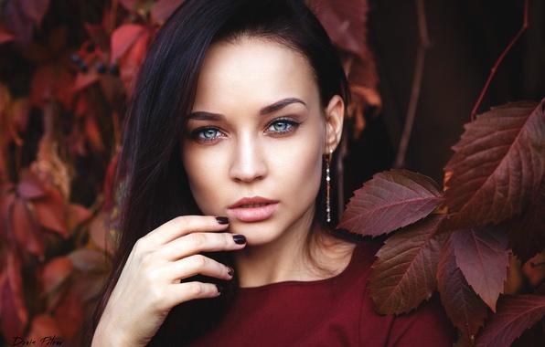 Картинка осень, взгляд, листья, девушка, лицо, красное, одежда, серьги, макияж, брюнетка, прикосновение, sexy, красивая, голубоглазая, симпатичная, …