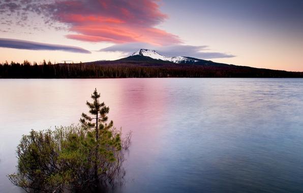 Картинка пейзаж, закат, горы, природа, озеро, дерево