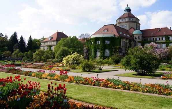 Картинка небо, пейзаж, цветы, дом, аллея, клумба, германия, мюнхен, ботанический сад