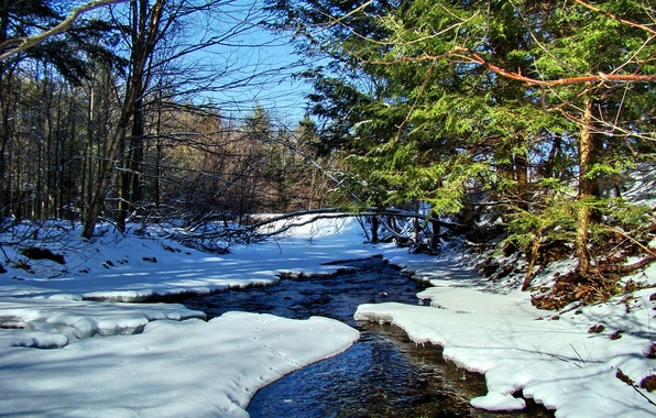 Картинка лес, небо, снег, деревья, пейзаж, река, ручей, весна