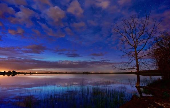 Картинка звезды, облака, ночь, озеро, дерево, рассвет, зарево