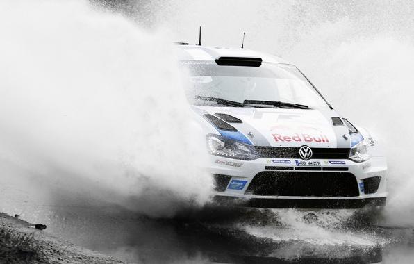 Картинка Вода, Авто, Белый, Volkswagen, Скорость, Лужа, Брызги, Red Bull, WRC, Rally, Polo, Предок