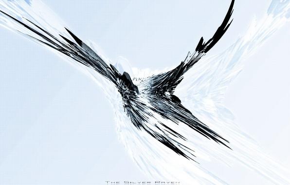 Картинка полет, сетка, птица