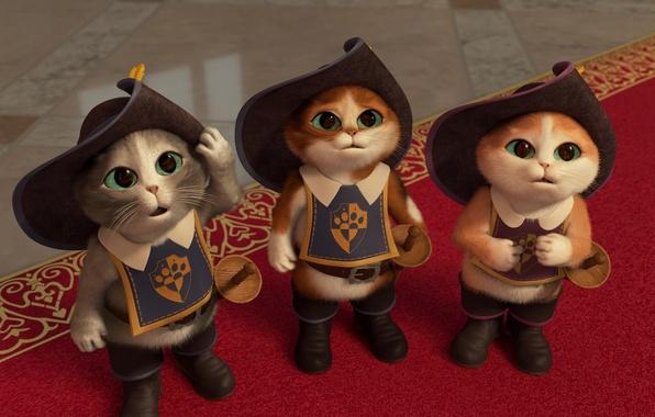 Картинка коты, мультфильм, сказка, сапоги, котята, зеленые глаза, шляпы, cats, kittens, короткометражка, шпаги, мушкетеры, Puss in …