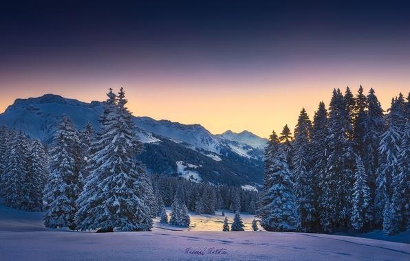Картинка зима, лес, снег, горы, утро, Альпы