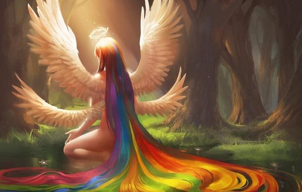 Картинка лес, вода, девушка, цветы, пруд, волосы, крылья, радуга, ангел, арт, нимб, спиной, сидя, sakimichan
