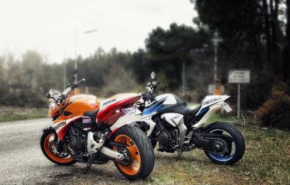Картинка дорога, мотоциклы, Hornet & CB100R