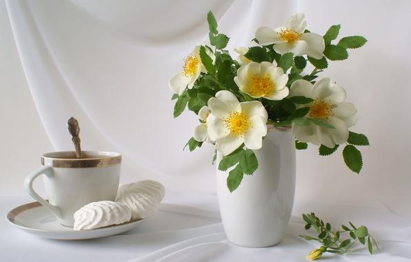 Картинка цветы, чай, букет, лепестки, чашка, ваза, натюрморт, блюдце, зефир