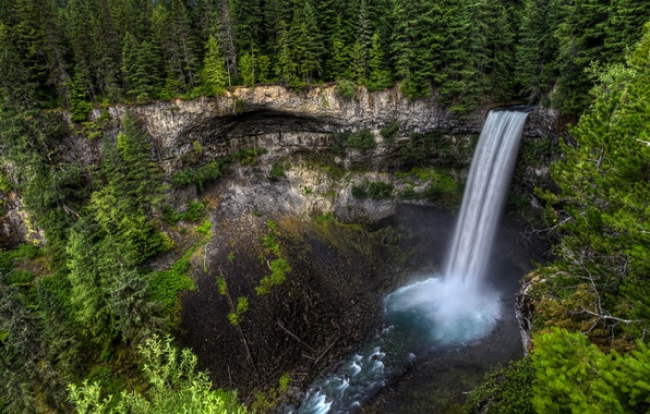Картинка лес, деревья, скала, водопад, поток, Канада, Canada, Brandywine Falls