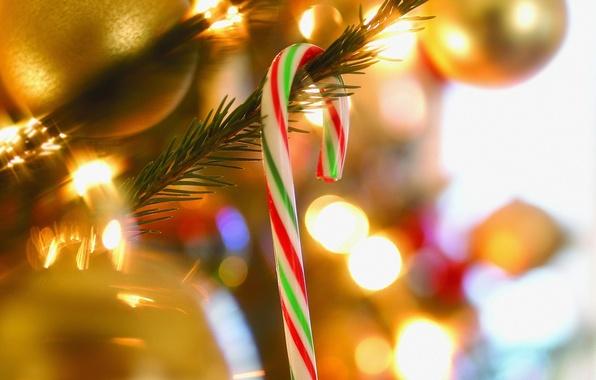 Картинка украшения, огни, фото, фон, праздник, обои, новый год, рождество, ёлка, гирлянды, картинка