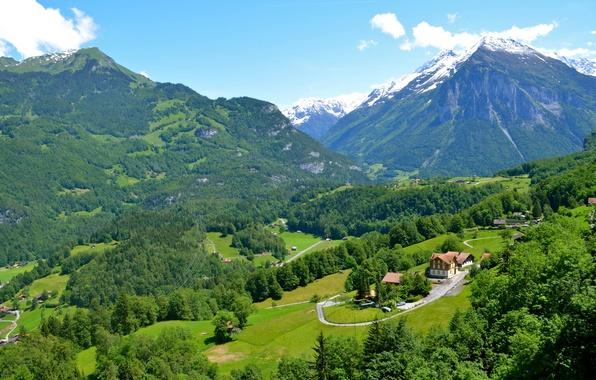 Картинка зелень, деревья, горы, поля, Швейцария, долина, домики, леса, Rueggisberg