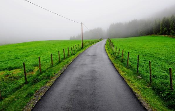 Картинка дорога, поле, туман, забор