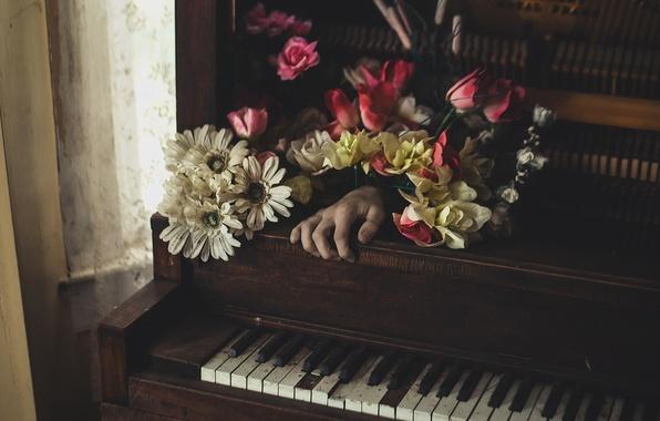 Картинка цветы, музыка, рука, пианино