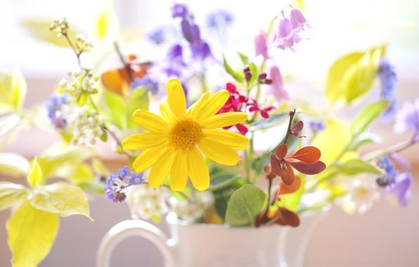 Картинка букет, полевые цветы, весенний