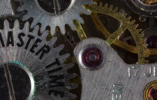 Картинка макро, время, часы, механизм, шестеренка