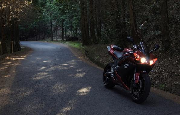 Картинка дорога, лес, красный, мотоцикл, red, yamaha, bike, ямаха, yzf-r1