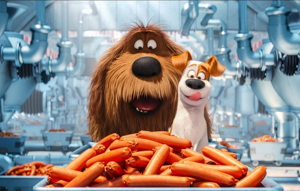 Картинка cinema, wallpaper, happy, food, dog, cartoon, movie, film, happiness, pet, Max, sugoi, subarashii, official wallpaper, …