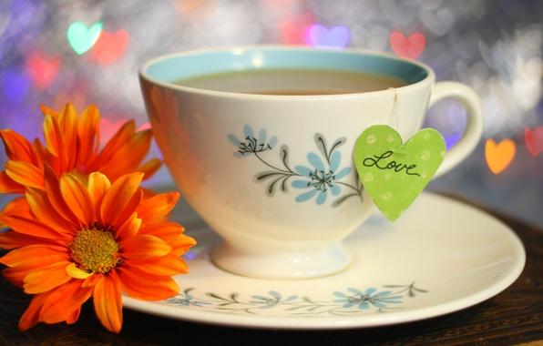 Картинка любовь, цветы, lights, праздник, чай, сердце, чашка, love, напиток, heart, flowers, cup, holiday, drink, tea, ...