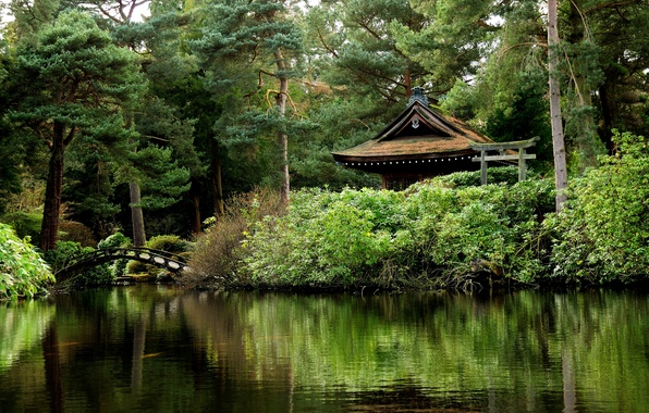 Картинка зелень, деревья, пруд, парк, Англия, мостик, беседка, Tatton Park