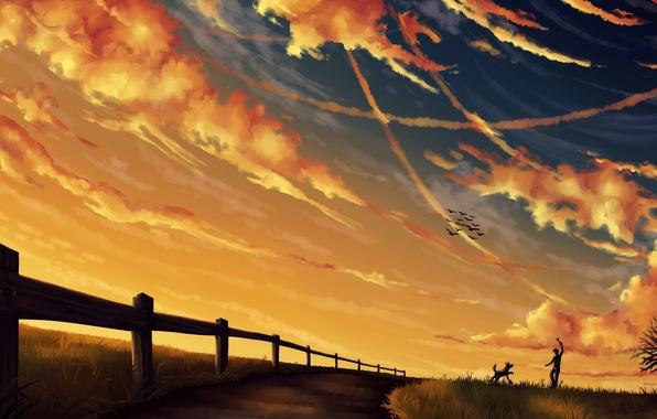 Картинка небо, облака, пейзаж, птицы, игра, забор, собака, вечер, арт, дорожка, парень, палка