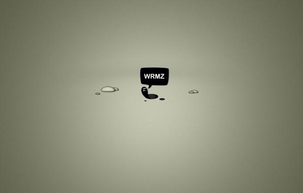 Картинка минимализм, minimalism, слово, worms, 2560x1600, word, червячки