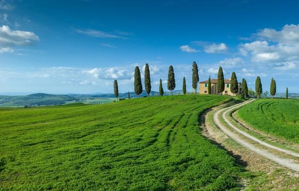 Картинка дорога, поле, небо, облака, деревья, дом, холмы, горизонт, ферма