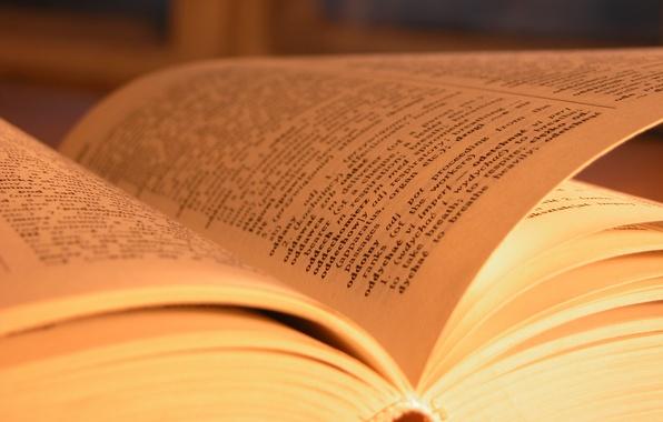 Картинка макро, бумага, книги, листы, книга