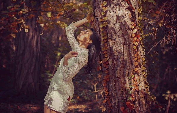 Картинка лес, девушка, дерево, платье