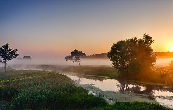 Утро река