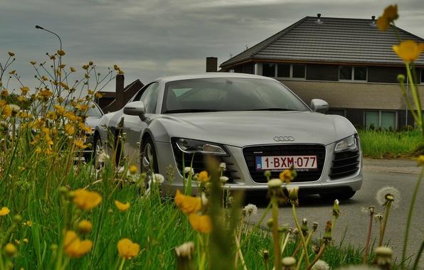 Картинка дорога, небо, трава, облака, цветы, дом, суперкар, Audi R8, автомобиль, одуванчики, полноприводный, среднемоторный