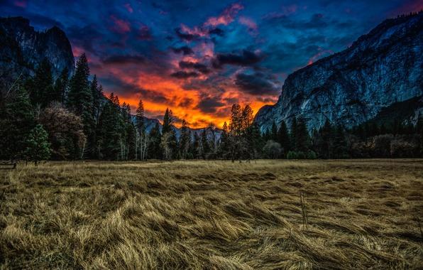 Картинка трава, облака, деревья, закат, горы, природа, луг, Калифорния, USA, США, Национальный парк Йосемити, Yosemite National …