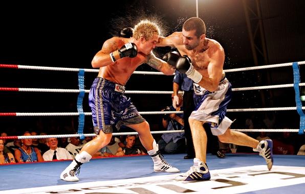 Картинка брызги, освещение, удар, ринг, мужчины, пот, зрители, boxing, уклон, Бокс, перчаткой