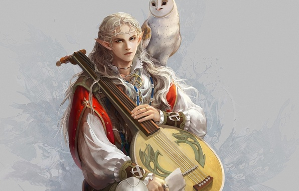 Картинка сова, птица, эльф, арт, парень, уши, бард, лютня