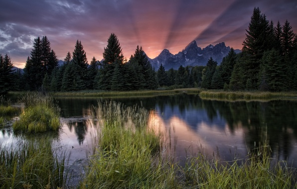 Картинка лес, закат, горы, река