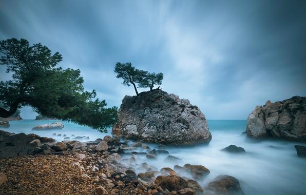 Картинка небо, деревья, тучи, камни, скалы, голубое, берег, побережье, Франция, Средиземное море