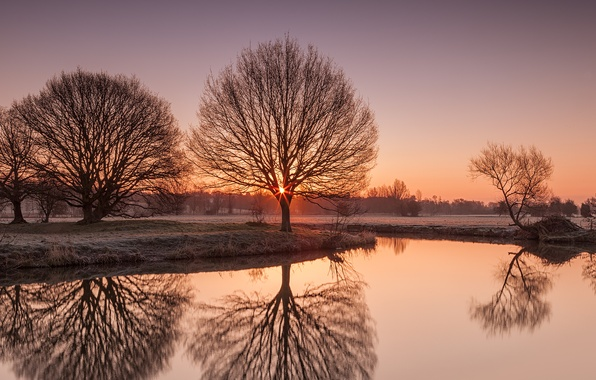 Картинка иней, деревья, природа, озеро, утро, Suffolk, River Stour
