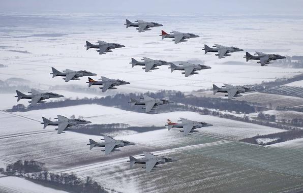 Картинка полет, истребители, много, Harrier, штурмовики, McDonnell Douglas, AV-8B