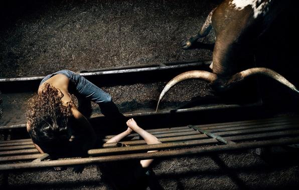 Картинка девушка, рога, арена, загон, бык