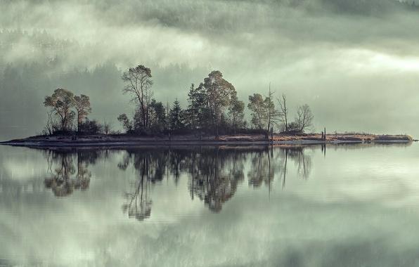 Картинка небо, деревья, туман, озеро, река, остров
