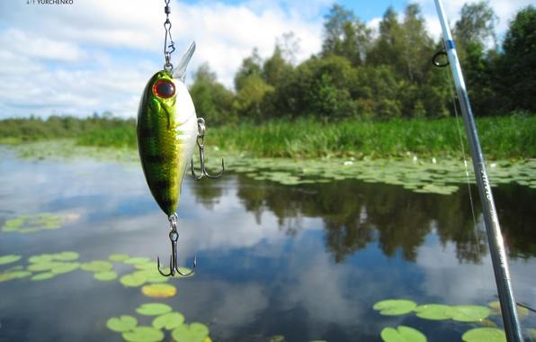 Картинка небо, вода, пейзаж, природа, озеро, отражение, река, отдых, рыбалка, спининг, блесна, воблер, удочка