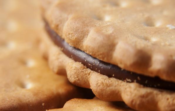 Картинка макро, еда, шоколад, печенье, крем, десерт, food, 1920x1200, macro, сладкое, chocolate, sweet, cream, dessert, cookies