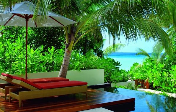 Картинка green, colors, colorful, summer, pool, sky, trees, sea, ocean, nature, umbrella, blue, beautiful, leaves, beauty, …